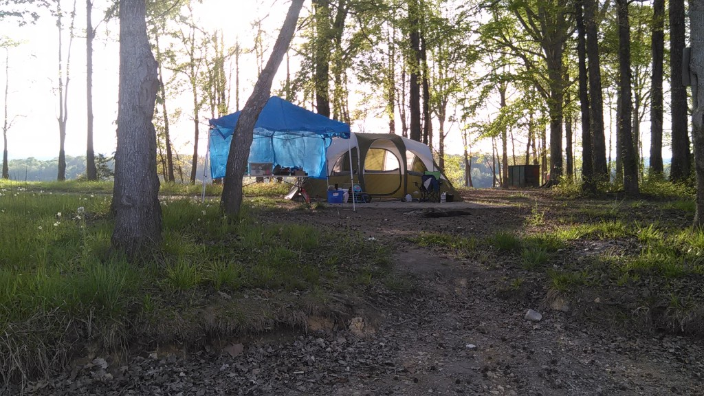 Jackson S Island Spring City Tennessee Free Camping