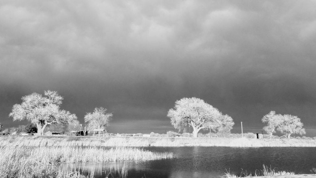 Bosque Redondo Lake Fort Sumner New Mexico Free