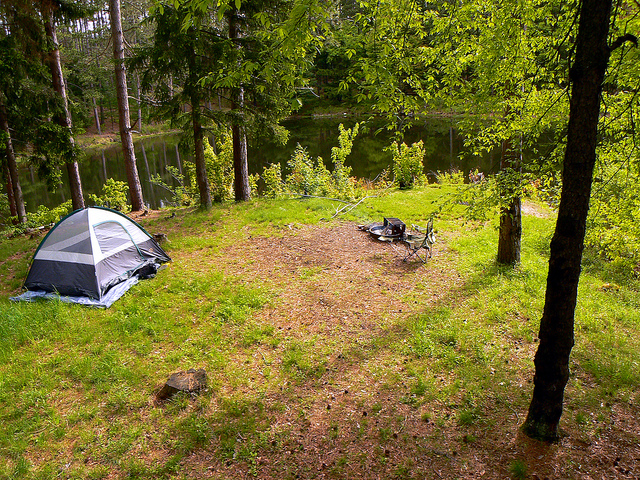 Ossian State Forest - Ossian, New York | Free Campsites Near You