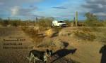 Free Camping at Road Runner BLM, Quartzsite, Arizona
